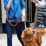 Emma Stone with her dog Ren