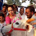 hema-malini-an-animal-lover