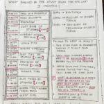Tina Dabi's study plan for IAS