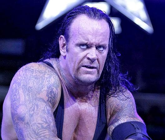 Undertaker Profile