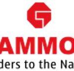 Akshat Rajan father construction company Gammon India Limited