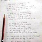 Captain Kapil Kundu poem