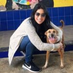 Dana Alexa Dog Lover