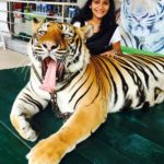 Jui Gadkari with tiger