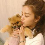 Lure Hsu, a dog lover