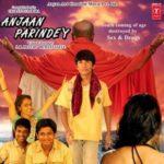 Mohak Meet's first movie Anjaan Parindey's poster