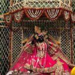 Shri Mridul Krishna Shastri in Shri Radha Sneh Bihari Temple