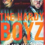 The Hardy Boys Book